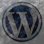 WordPressのプラグイン / ACF,アドバンス カスタムフィールドが表示されない、カスタム投稿が表示されない